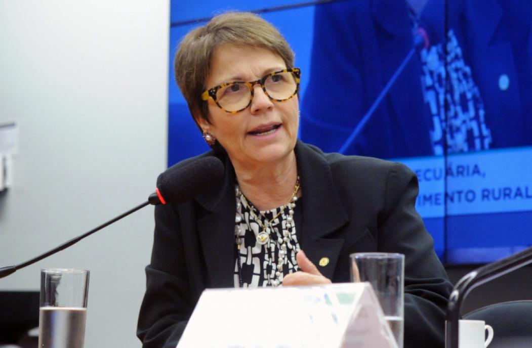 Tereza Cristina é ministra indicada pela bancada ruralista