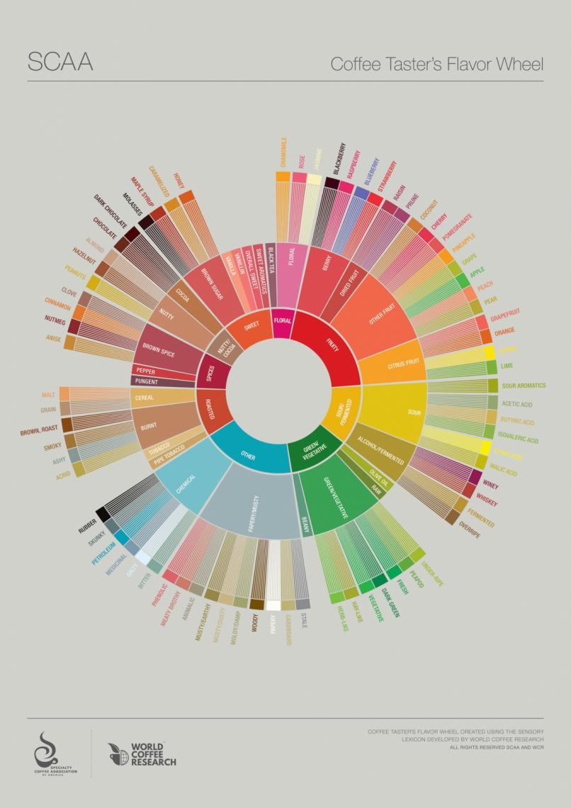 Roda de Aromas e Sabores é um bom instrumento para usar como guia durante a degustação. Existem várias versões disponíveis, a mais conhecida é da SCA (Specialty Coffee Association). Serviço: store.sca.coffee