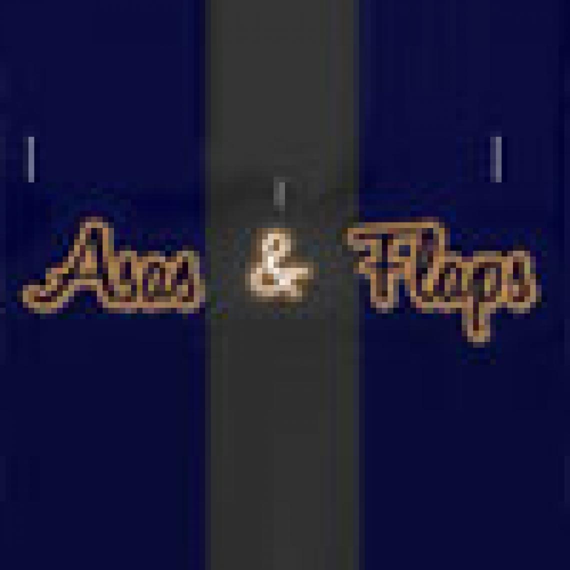Asas e Flaps