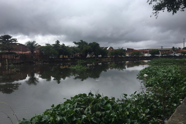 Tempo chuvas deve voltar ao Cariri nesta sexta, de acordo com a Funceme (Foto: Alexia Vieira / Especial para O POVO) (Foto: (Foto: Alexia Vieira / Especial para O POVO))