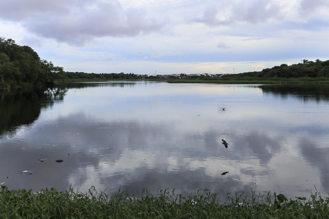 Parque Rachel de Queiroz é a principal área verde da zona oeste de Fortaleza