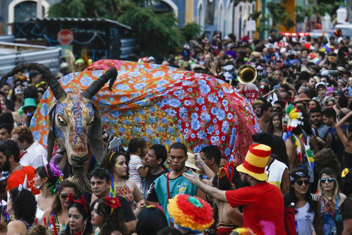 Estandarte do bloco Iracema Bode Beat no Carnaval de Fortaleza 2018 (Foto: Mateus Dantas/O POVO)