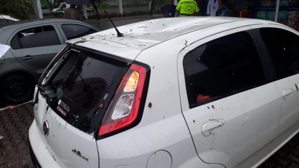 Vidro de carro quebrado após queda de árvore (Foto: Leonardo Maia/Especial para O POVO)
