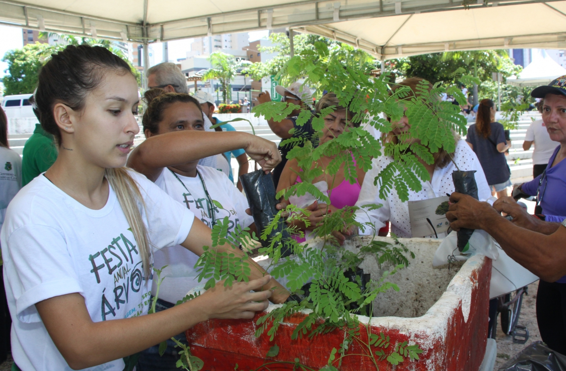 MEIO AMBIENTE ganha atenção em oficinas e palestras sobre compostagem e educação