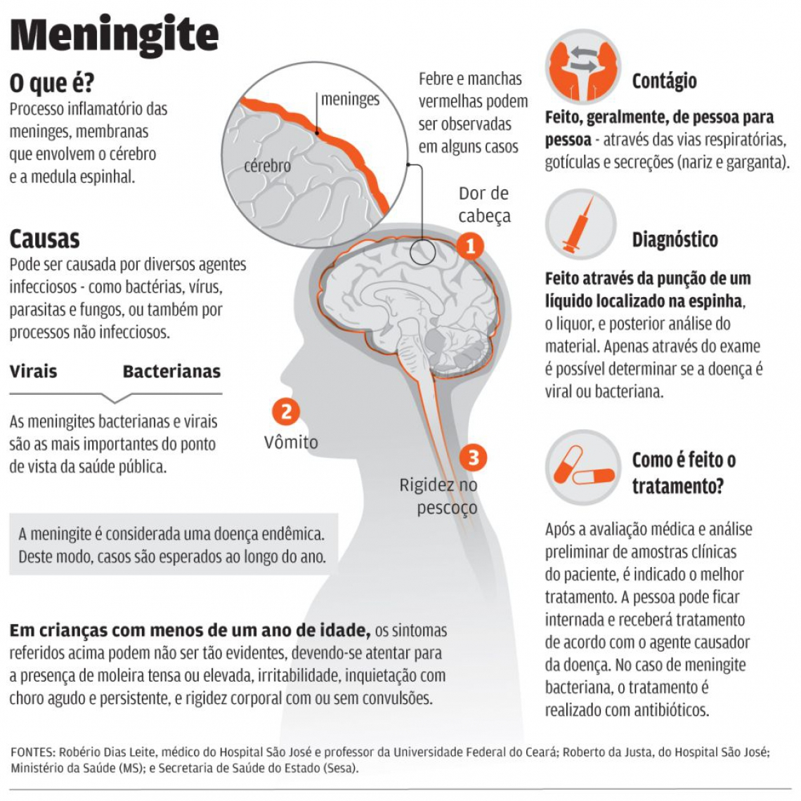 Luciana Pimenta/ Infografia O POVO