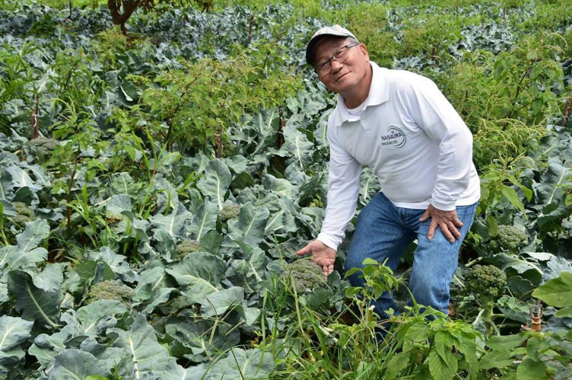 Jiro Nagaura faria 82 anos nesta segunda-feira, 25