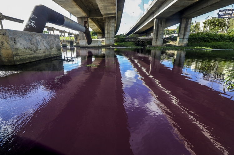 Trecho do rio Cocó ficou com coloração roxa.