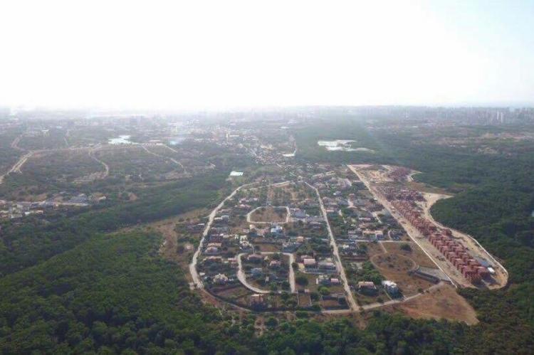 Desmatamento do Parque do Cocó