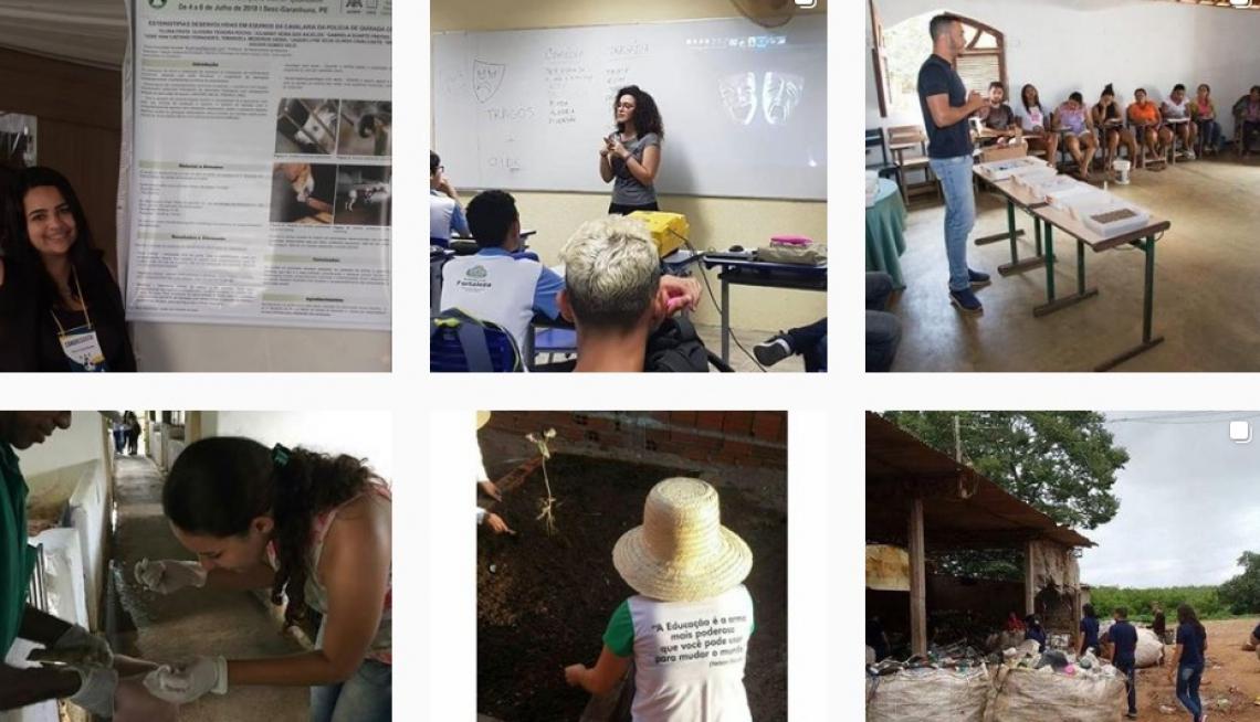 Perfil @balburdiauece apresenta uma série de projetos desenvolvidos pela universidade estadual