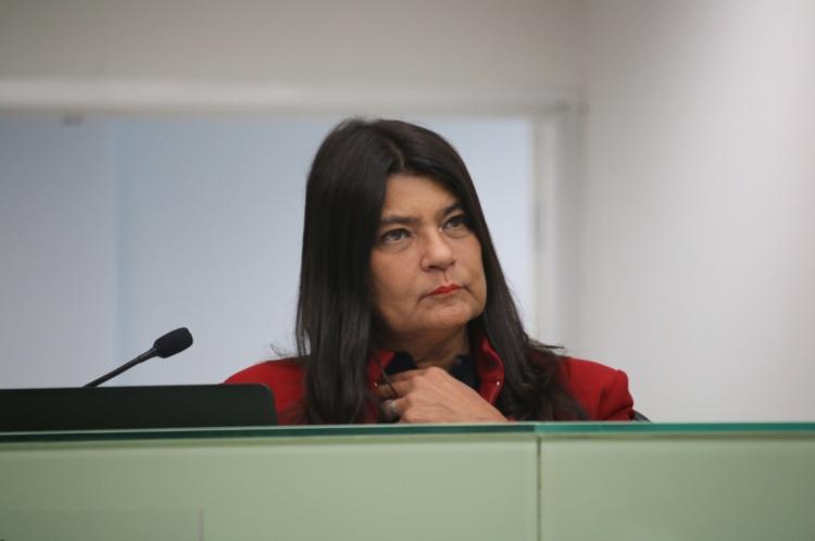 RELATORA do parecer, Patrícia Saboya afirmou que o Estado tem se comportado de maneira