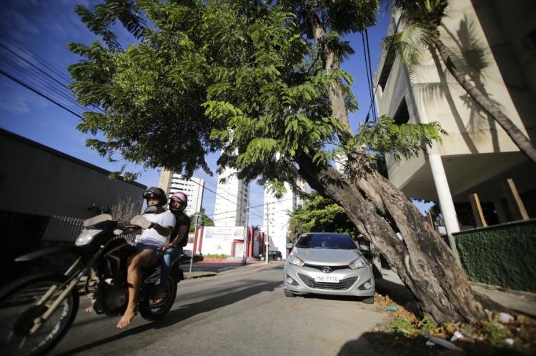 FORTALEZA, CE, BRASIL, 08-06-2019: Arvore bem inclinada na Rua Dom Expedito Lopes, quase esquina com Rua Nunes Valente. (Foto: Aurélio Alves/O POVO)