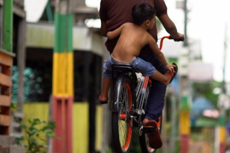 A obra busca os focos e motivos da resiliência do uso da bicicleta como meio de transporte, mesmo dentro de um cenário de tanta motorização