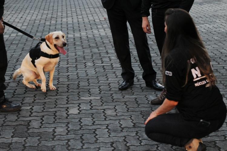 Polícia Civil inaugura Núcleo de Combate as Drogas com cães.