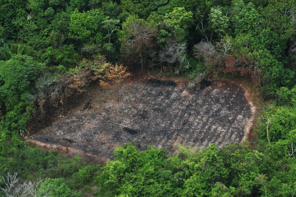 A pressão internacional é vista como uma esperança de barrar os retrocessos nas pautas ambientais. Os especialistas confiam, inclusive, nas perdas econômicas como motor para estas mudanças