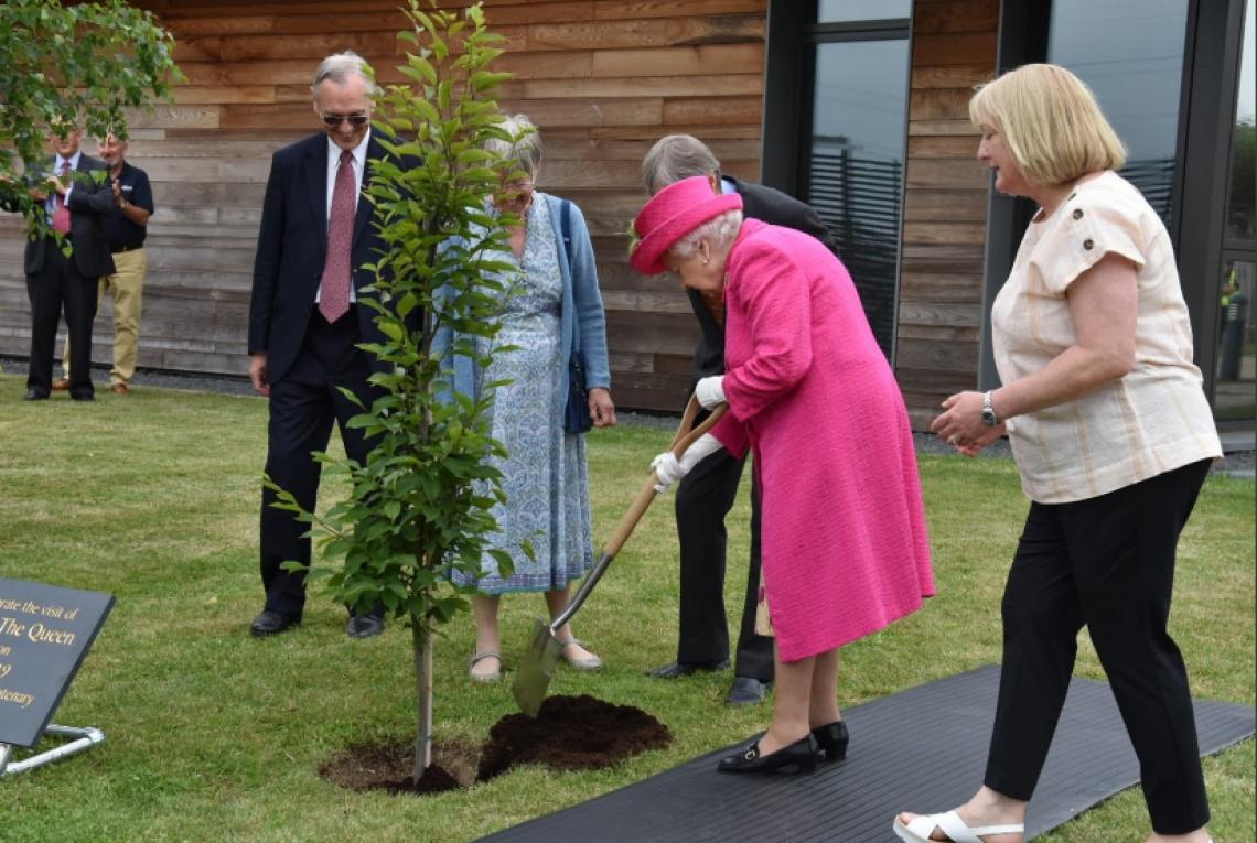 Rainha Elizabeth II planta árvore sozinha no Reino Unido