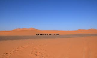O deserto do Saara se estende por cerca de 11 países, entre Líbia, Argélia, Mali e Marrocos