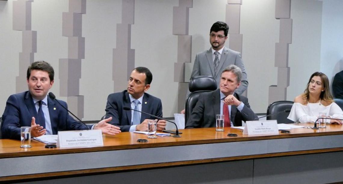 COMISSÃO Especial da Medida Provisória da Liberdade Econômica