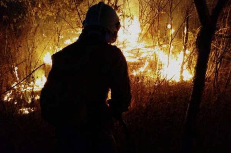 A guarnição de serviço da 2ª Companhia do 4º Batalhão de Bombeiros Militares (2ª Cia/4ºBBM), quartel sediado em Limoeiro do Norte, foi acionada para diversas ocorrências envolvendo incêndio em vegetação ao longo deste domingo, 4