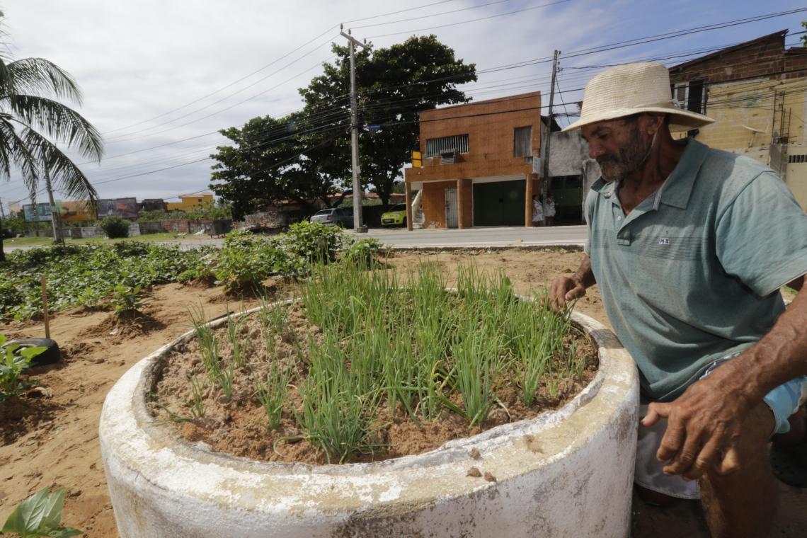 FORTALEZA, CE, BRASIL, 07-08-2019: Francisco Ferreira, 54 anos, mantém uma Horta no final da Avenida Santos Dumont, próximo à Praça Helder Câmara, na Praia do Futuro. (Foto: Mauri Melo/O POVO).