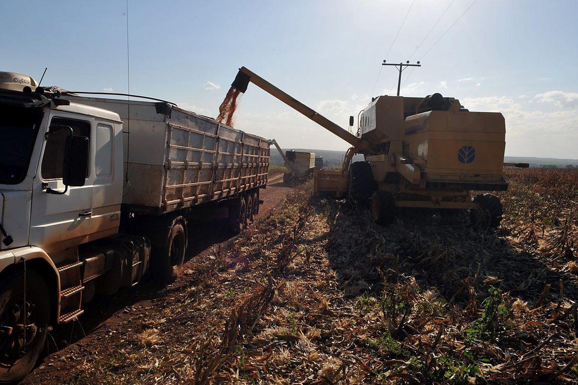 Exportações do agronegócio aumentam 20,9% no primeiro semestre de 2021, em relação ao ano passado (Foto: Valter Campanato/Agência Brasil)