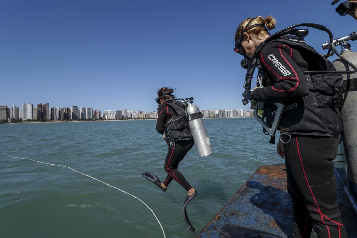 Pesquisadores mergulham em recifes para estudar espécies como peixes, corais e esponjas