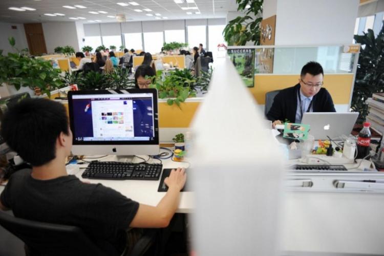 O estudo ouviu 269 profissionais que trabalham em diversas organizações (Foto: AFP)