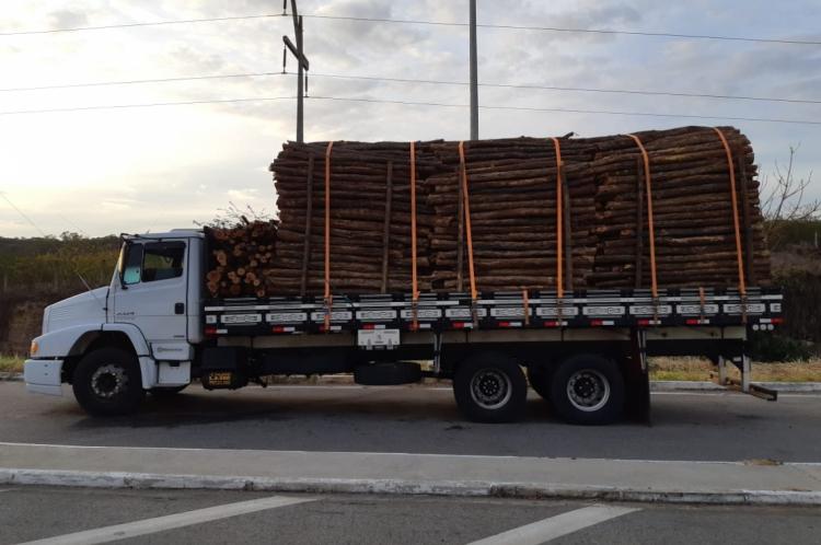Carga de 15 m³ de madeira ilegal foi apreendida na BR-116 em Milagres