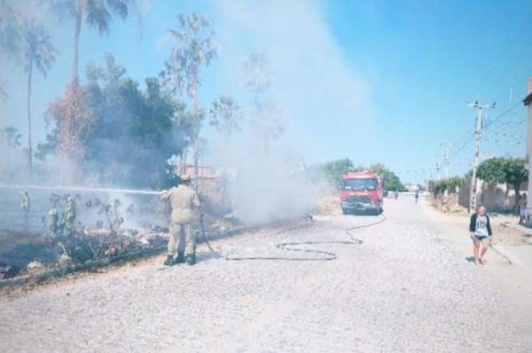 Os incêndios em vegetação foram contidos pelo quartel de Limoeiro do Norte do Batalhão de Bombeiros Militares