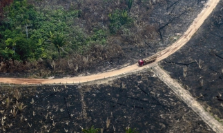 Aerial view of burnt areas of the Amazon rainforest, near Boca do Acre, Amazonas state, Brazil, in the Amazon basin, on August 24, 2019. - President Jair Bolsonaro authorized Friday the deployment of Brazil's armed forces to help combat fires raging in the Amazon rainforest, as a growing global outcry over the blazes sparks protests and threatens a huge trade deal. (Photo by Lula SAMPAIO / AFP)       Caption