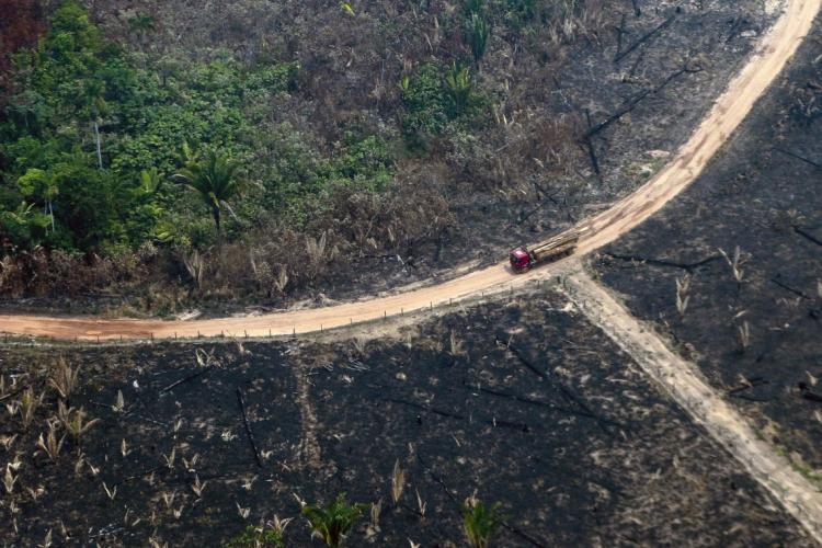 No Brasil, o ano de 2019 registrou os maiores índices de desmatamento na Amazônia. (Foto:  Lula SAMPAIO / AFP)