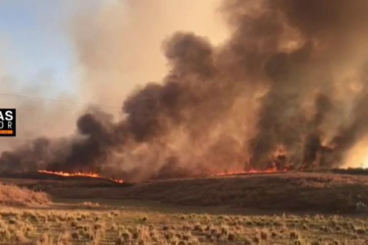 Incêndio atingiu a região