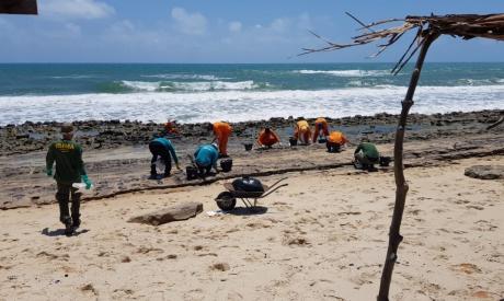Resíduos de óleo são retirados de praias em ação emergencial realizada pela prefeitura em Fortaleza.