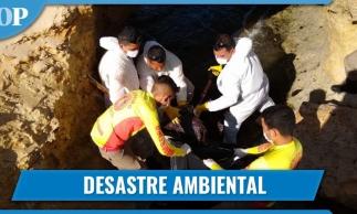 Óleo nas praias: impacto para os moradores do litoral do Ceará