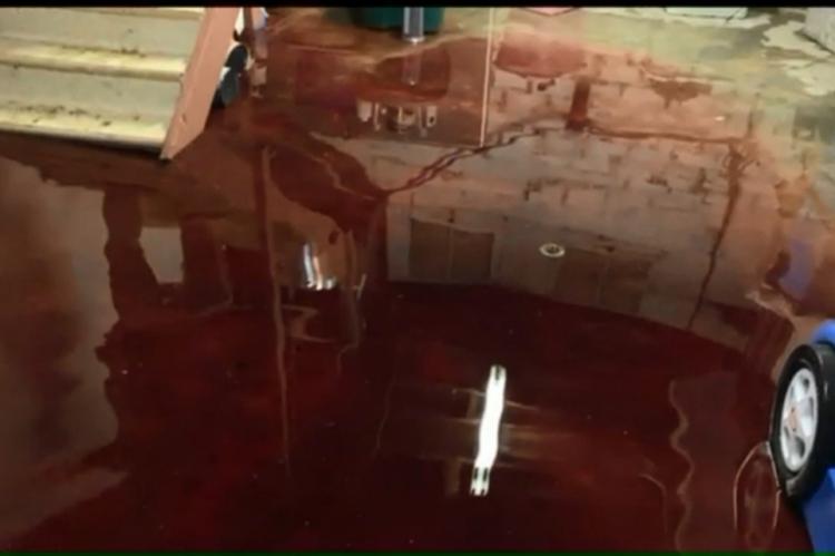 O porão da casa estava coberto por uma camada de cinco centímetros de sangue e restos de animais