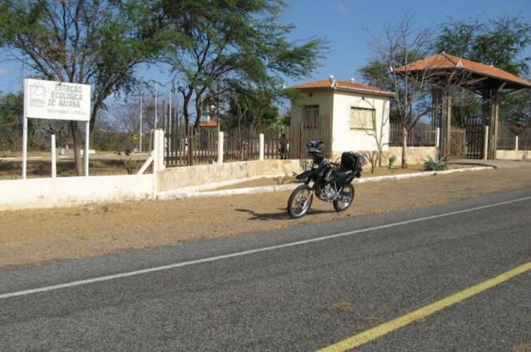 A Estação Ecológica de Aiuaba fica na região dos Inhamuns