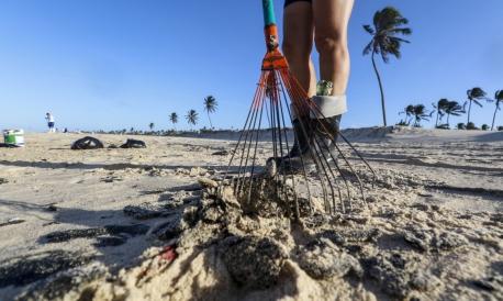 Aprendizes Marinheiros ajudam a recolher óleo na praia do Cumbuco.