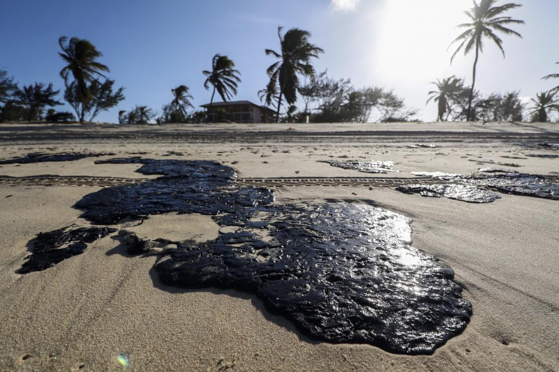 (Foto: ALEX GOMES/Especial para O POVO)Manchas de óleo atingem a praia do Cumbuco, famosa internacionalmente pelos bons ventos para a prática de kitesurf