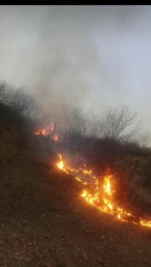 Trabalhadores estão preocupados com a proporção que os focos de incêndio podem tomar