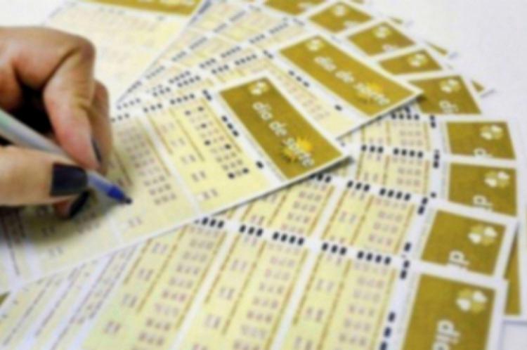 O sorteio do Dia de Sorte Concurso 233 será divulgado na noite desta terça-feira, 03 de dezembro (03/12)