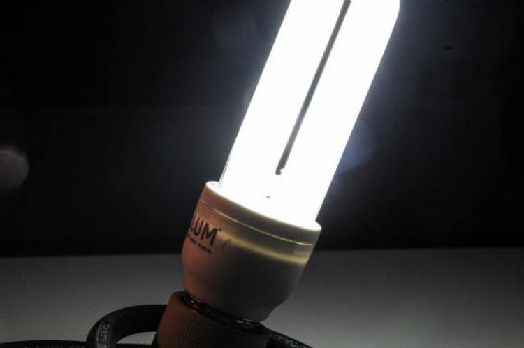 Lâmpadas devem ser descartadas em locais específicos para não contaminar o meio ambiente