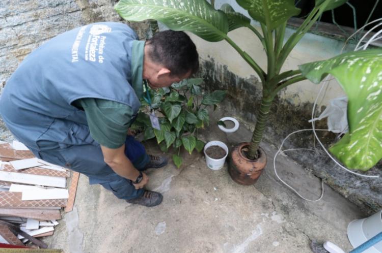 Em 2019, o Ceará registrou mais de 15 mil casos de dengue e 13 óbitos pela doença.