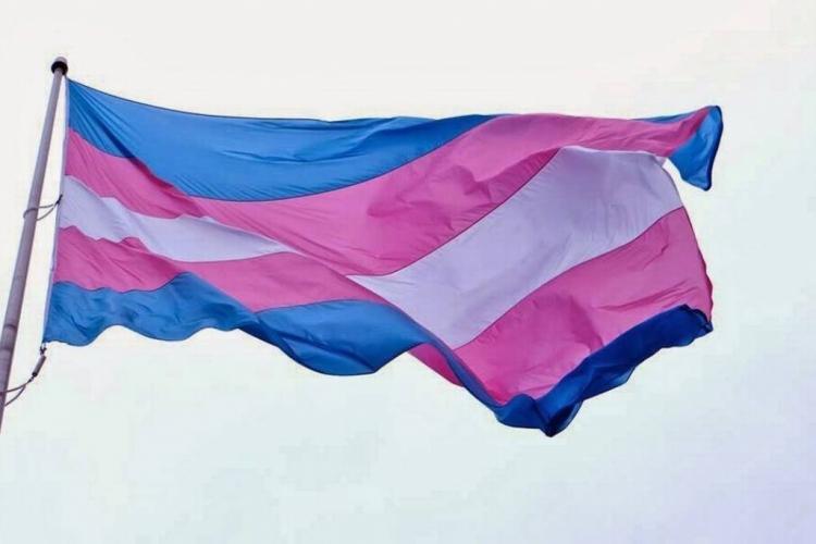 Coordenadoria reforça suporte no mês da Visibilidade Trans (Foto: Reprodução )