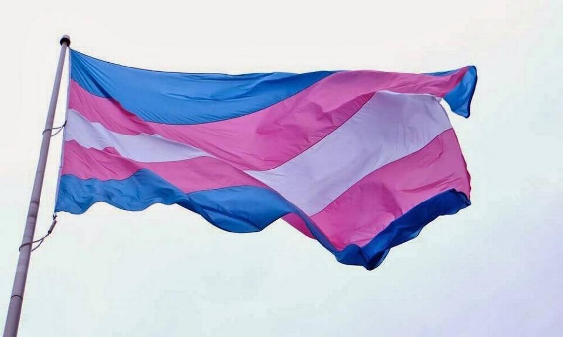 Organização Mundial da Saúde (OMS) retira a transexualidade da lista de transtornos mentais