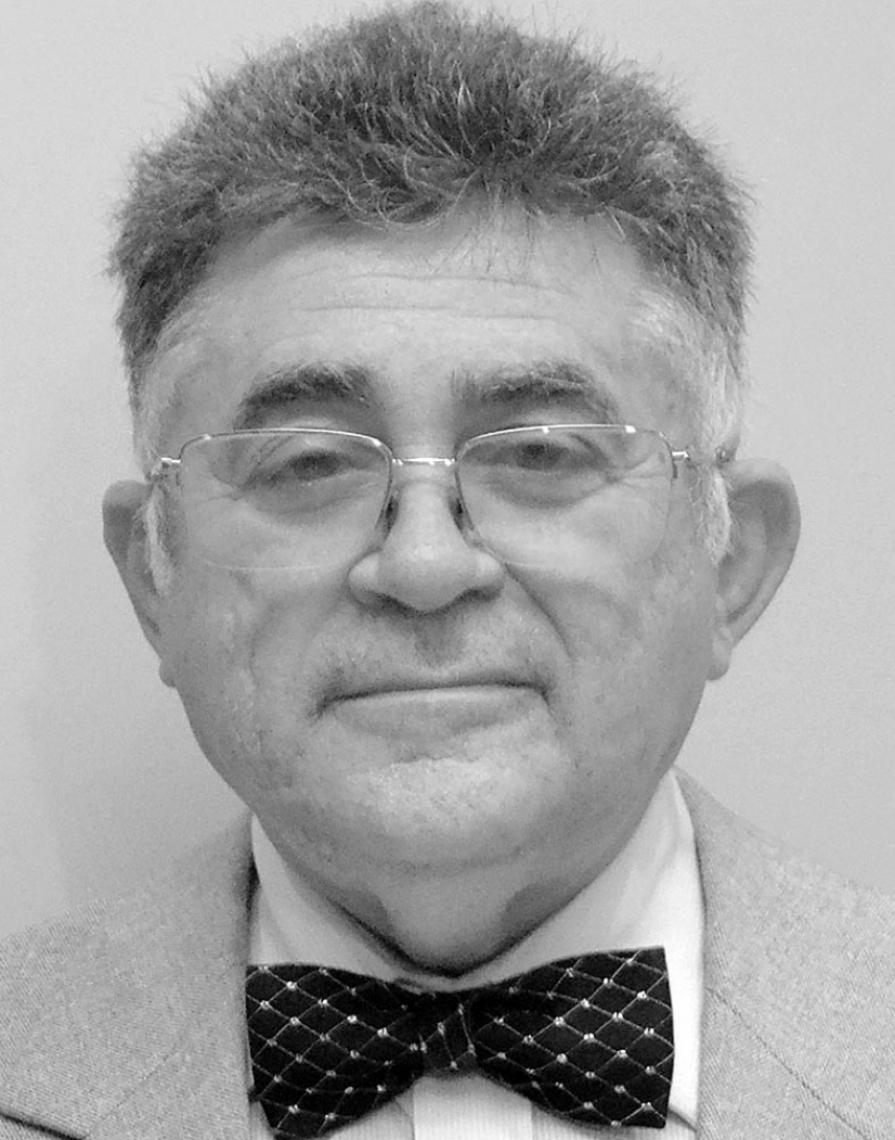 Marcelo Gurgel Carlos da Silva Professor universitário e médico