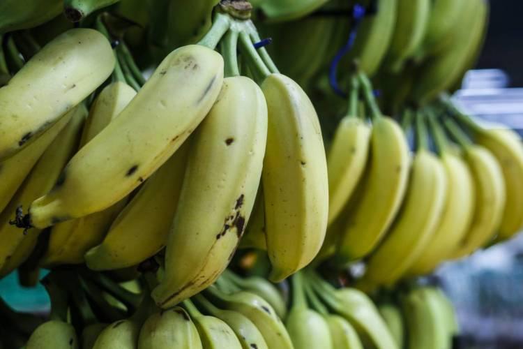 Preço da banana diminuiu porque estamos em plena safra da fruta (Foto: BÁRBARA MOIRA/ O POVO)