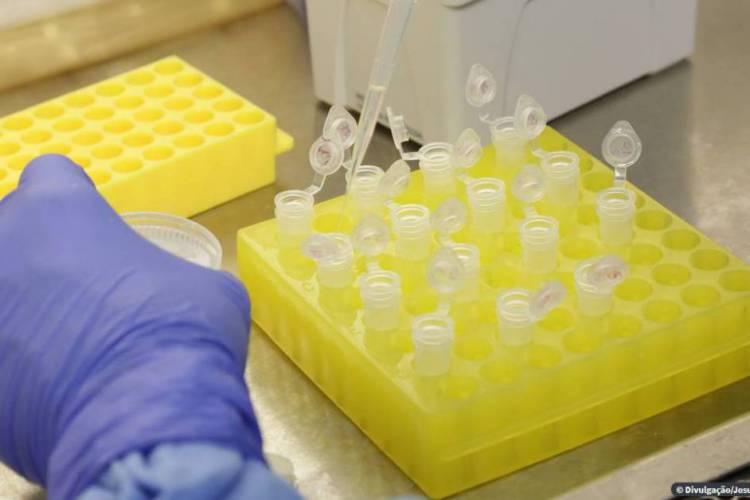 Ao todo, 31.070 exames já foram realizados no Ceará (Foto: O POVO.DOC)