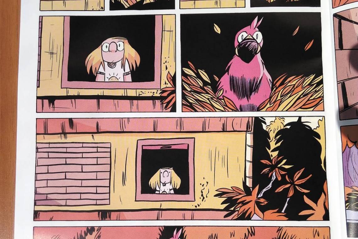 No Brasil, existem diversos quadrinhos que não são conhecidos pela grande massa; na imagem,