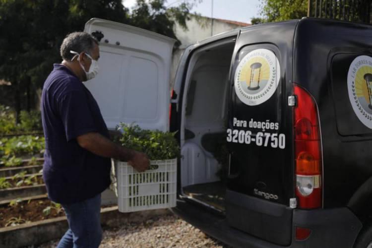 Funcionários do projeto Horta Social e do Lar Torres de Melo colhem as hortaliças doadas pela Prefeitura de Fortaleza à entidade (Foto: Divulgação/ SDHDS)