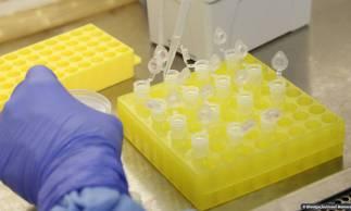 Uso de hidroxicloroquina no tratamento da Covid-19 é apontado como ineficaz por representantes da OMS (Foto: ARQUIVO)