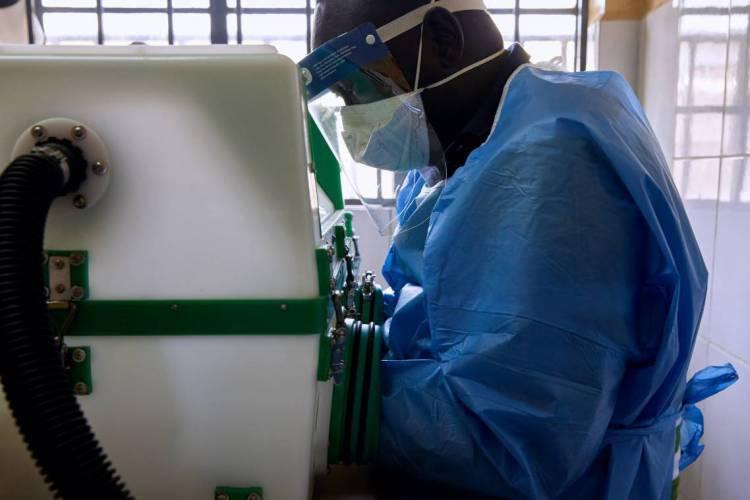 Amostras são analisadas em laboratório em estudos sobre coronavírus (Foto: Alex McBride / AFP)